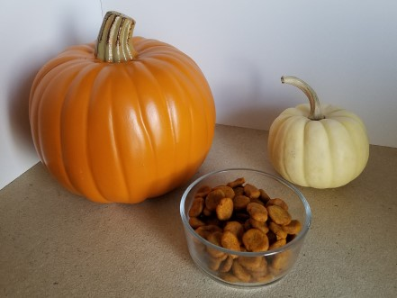 Orange pumpkin and white pumpkin with pumpkin dog treats.