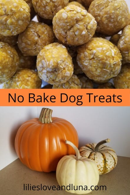 Pin image for no bake dog treats.