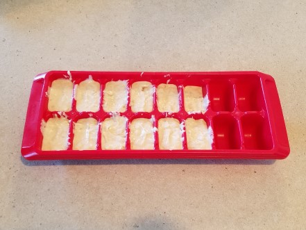The dog ice cream in an ice cube tray.